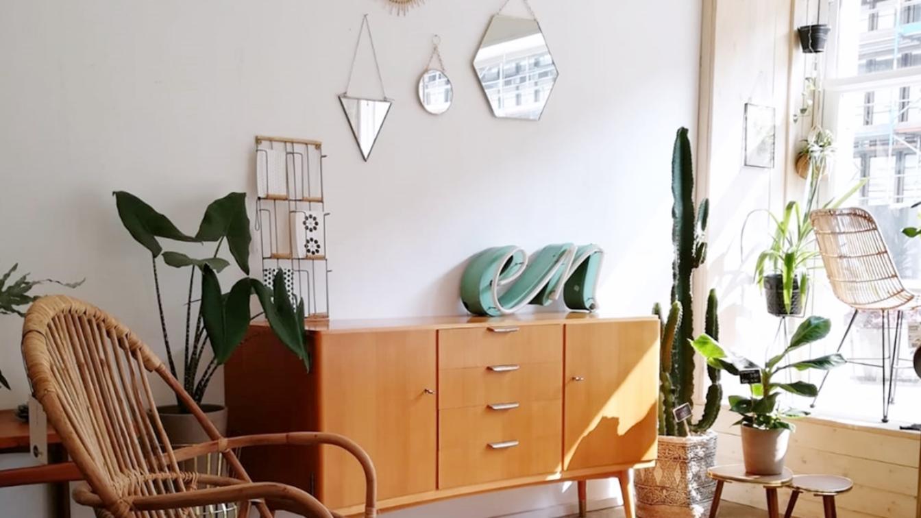 mill – vintage & interior & plants in köln innenstadt